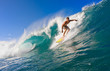 Surfer on Tropical Blue Wave