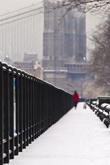 passeggiata a NY in inverno