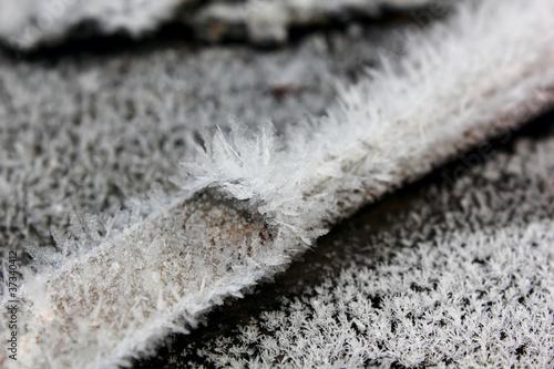 Hoarfrost crystals.