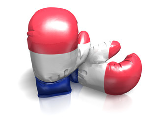 BOXING GLOVES FRANCE