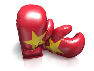BOXING GLOVES VIETNAM