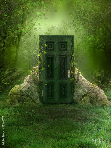 Leinwanddruck Bild Fantasy Forest Background