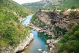 Tara river canyon in Montenegro mountains poster
