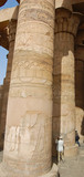 Papyrus shaped column in Kom Ombo temple, Egypt