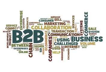 B2B concept in tag cloud on white background