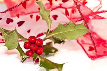 Ruban rouge et branche de houx, fond blanc