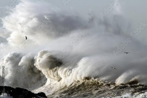 Fototapeten,welle,sturm,stürmig,ozean