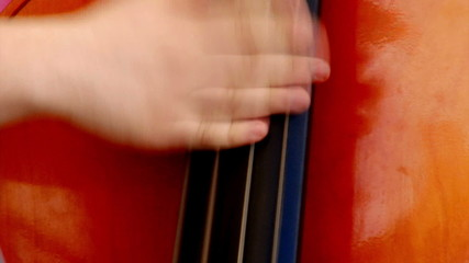 Man fast playing double bass, live concert,