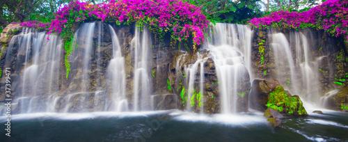 obraz PCV Piękny Lush Wodospad