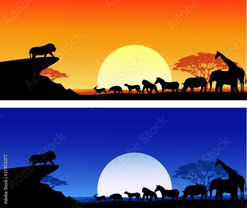 Safari background silhouette