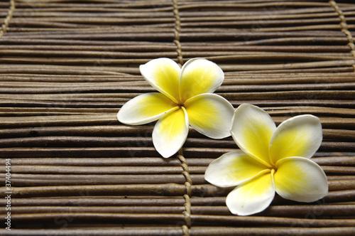 Zestaw frangipani kwiat namaty bambusowe