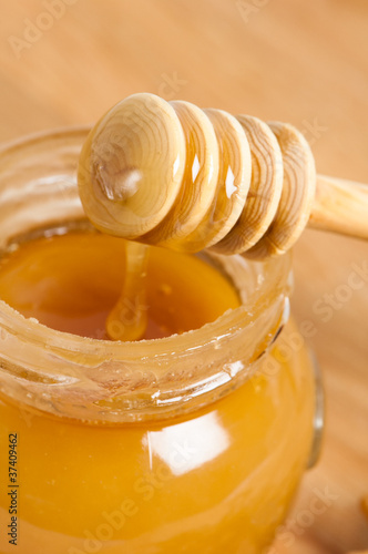 fresh gold honey dipper