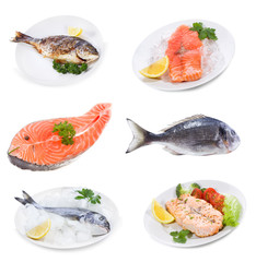 set with different raw and prepared fish
