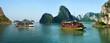 bateaux de croisière