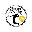timbre beach volley
