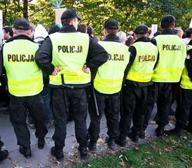 Polish police patrols in action