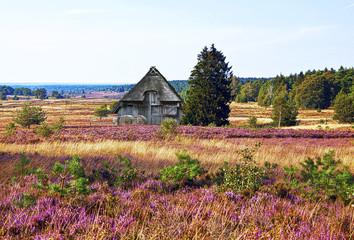 Urlaubsregion Lüneburger Heide, HDR