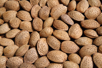 Background of Almond nuts