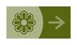 signe, symbole, picto, logo, flèche, fleur, fleuriste, floral