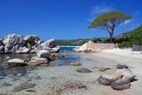 Fototapeta kamień - klif - Plaża