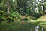 The famous beauty botanic garden on Azores