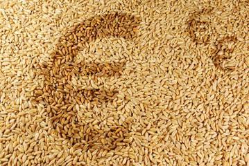 Markt für Agrarrohstoffe - Euro-Zeichen auf Weizen