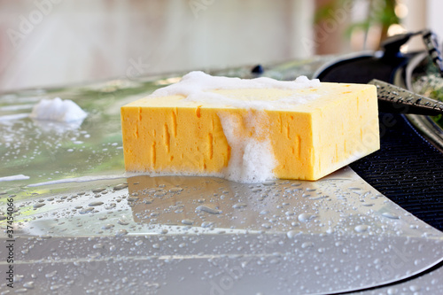 Wash car with sponge and shampoo