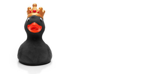 Crowned black rubber duck