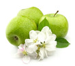 Green apple with white flowers close up