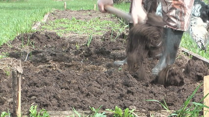 Man digs a flowerbed in the garden pitchfork.