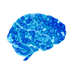 human brain, cold mind, vector abstract background