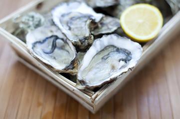 petite caisse d'huîtres
