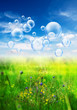 bubbles over meadow
