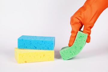 sponge in hand