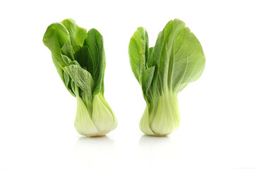 Brassica isolated in white background