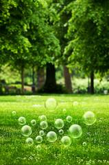 Summer park bubbles