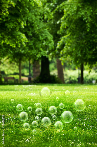 Summer park bubbles