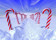Candy canes path