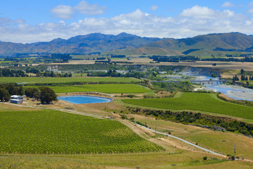 New Zealand Wine Country