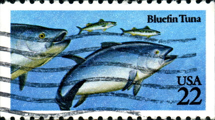 Bluefin Tuna. US Postage.