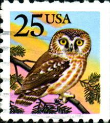 Owl. Us Postage.