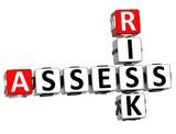 3D Assess Risk Crossword poster