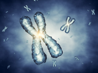 Chromosomes , genetic engineering
