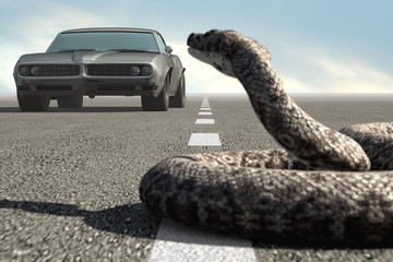Retro car and snake