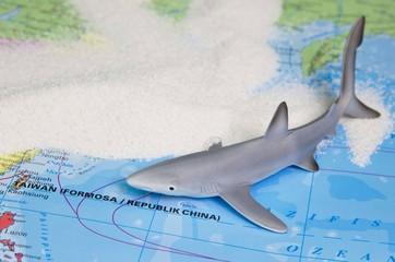 Ein Blauhai in Taiwan