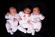 3 petits bébés de 3 semaines