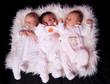 3 bébés de 3 semaines
