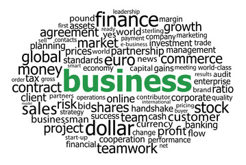 BUSINESS Tag Cloud (finance banking management profit commerce)