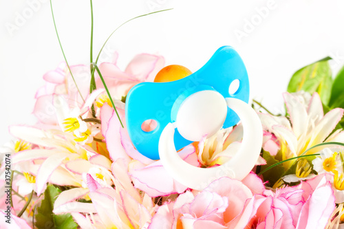 Baby Pacifier on the flowers