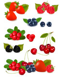 Big group of fresh berries. Photo-realistic vector